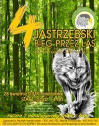 IV Jastrzębski Bieg Przez Las